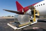 Срочная доставка грузов из Италии в Россию. Стоимость